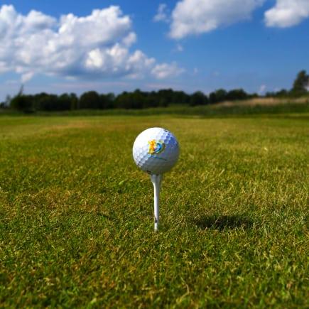 Golfball ved Aktivitetsbyen Gamle Fredrikstad
